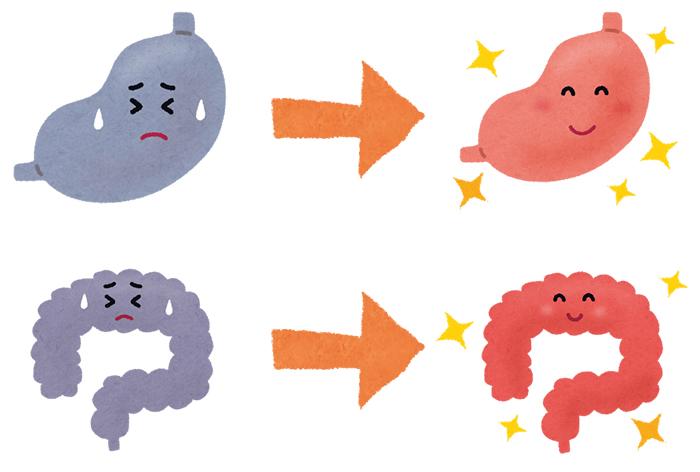 腸もみダイエット 腸セラピー セルフメイド